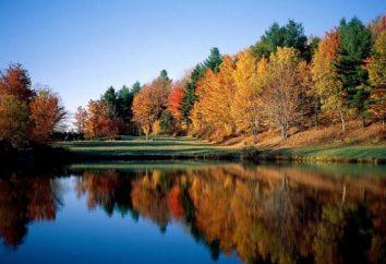 Descripción del otoño en el ensayo de la escuela