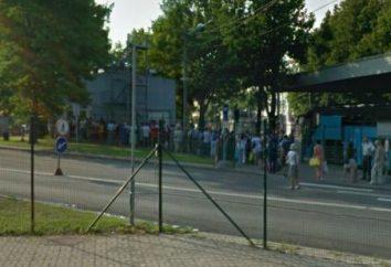 Il confine con l'Estonia. Come superare rapidamente la coda al confine con l'Estonia?