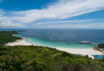 Você está procurando as melhores praias? Pattaya sabe muito sobre eles!