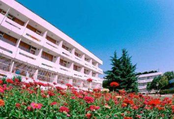 Hotel Kompas 3 * (Albena, Bulgaria) fotos y comentarios