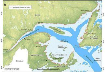 Golf von St. Lawrence: Beschreibung, Geschichte und interessante Fakten