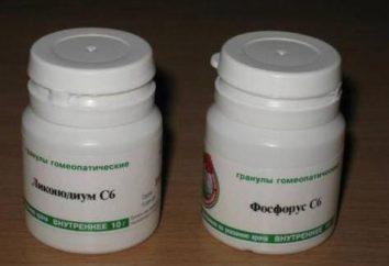 """""""Lycopodium"""" (homéopathie): indications d'utilisation, réelles"""