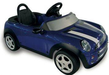 Kinderwagen auf der Batterie – was kaufen?