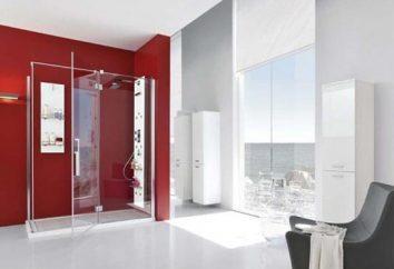 Jak zbierać prysznica własnymi rękami