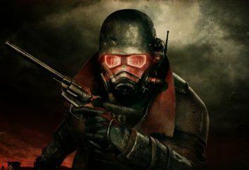 Fallout New Vegas ne démarre pas après le lanceur. raisons solution
