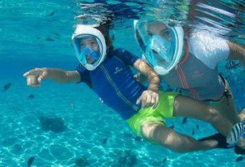 Le masque complet pour la plongée en apnée: caractéristiques, caractéristiques, l'examen de certains modèles