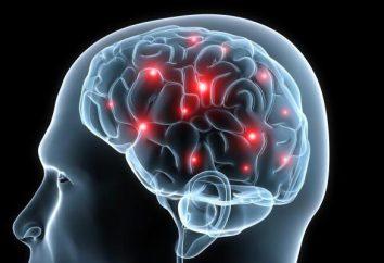 Schädel-Hirn-Verletzung: Erste Hilfe, Symptome, Zeichen