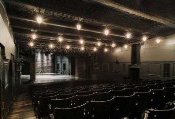Uduchowiony Teatr Zhenovacha Sergeya: Opis, historia, repertuar i opinie