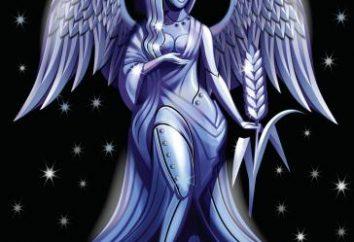 Compatibilità: Lei – la Vergine, egli – Virgo. Per quanto riguarda questa coppia si adatta insieme?