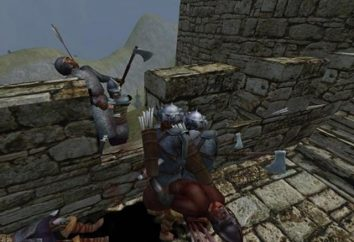 """Mount and Blade: Geschichte des Helden"" – Mode. ""Mount and Blade: Geschichte des Helden"": Cheats, Codes,"