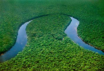 Źródło rzeki Konga. Identyfikacja źródeł