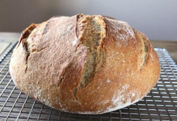 pane di grano-segale forno lievitata – ricetta