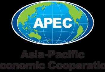 APEC – décodage. Coopération économique Asie-Pacifique: la liste des pays