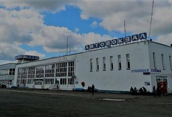 Estações de ônibus do sul e do norte de Ufa