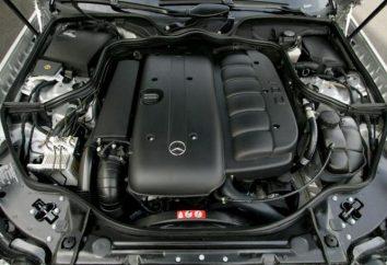 Plusy i minusy diesla i benzyny. Diesel czy benzyna? Co wybrać?