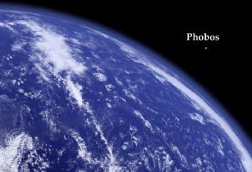 """Deimos e Phobos. """"La paura"""" e """"horror"""""""