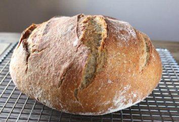 """Baking do programa de TV """"pão honesto"""": receitas de pão, tortas e pães"""