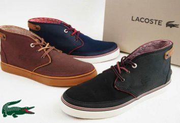 Chaussures Lacoste – la qualité et le confort en parfaite harmonie avec le style impeccable et un design unique