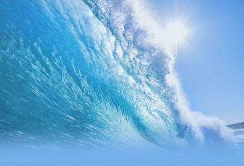 El papel biológico del agua. si la vida es posible sin agua