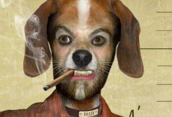 """""""Cuore di cane"""". L'immoralità sconfinato problema"""