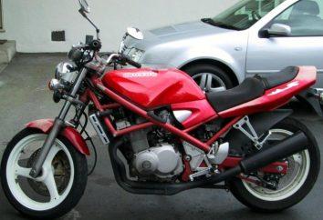 Beschreibung Suzuki Bandit 400 Rennrad