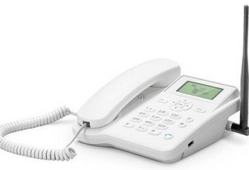 Les téléphones sans fil avec carte SIM fixe: un examen des meilleurs modèles et commentaires
