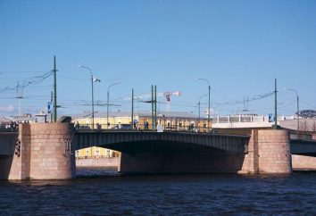 Ponte Tuchkov (San Pietroburgo). Tuchkov Bridge: foto