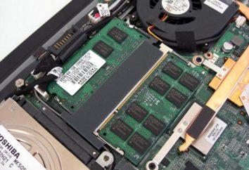 Intel GMA X4500: grafika adapter do najbardziej atrakcyjnych laptopów