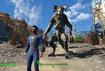 """Come impostare la moda nel """"Fallout 4"""": dichiarazione"""