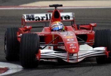Formel-1-Auto – das perfekte Auto