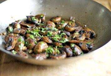 En el bosque, había setas Obabkov? Es hora de aprender a cocinar ellos!