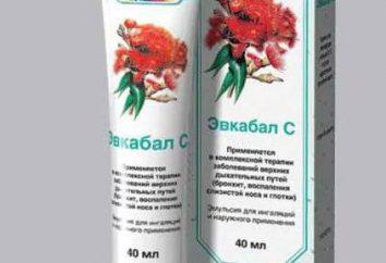 """""""Evkabal"""" (Balsam): Gebrauchsanweisungen, Analoga und Bewertungen"""