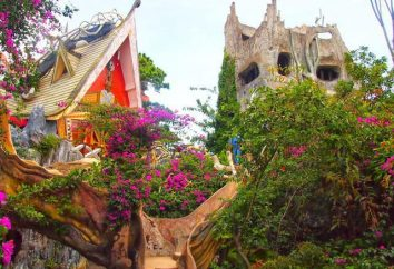 "Vietnam, ""Crazy House"": recensioni e foto"
