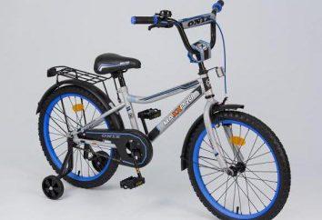 bicicletas para niños MaxxPro: especificaciones, opiniones