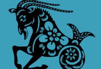 Las personas de qué signo del zodíaco nacen el 20 de enero? ¿Cuál es la especificidad de su carácter y temperamento?