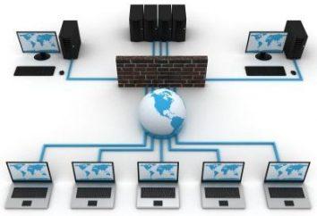 Die Installation des LAN. Installation und Wartung von Computernetzen