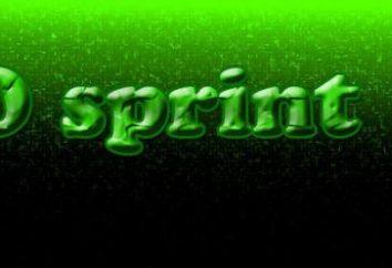 Commentaires: SeoSprint. Le travail et les gains sur autoclicker