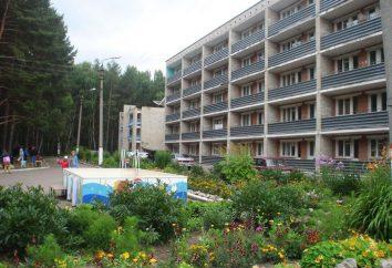 Aleksin (région de Tula). Ville Aleksin (région de Toula): attractions, loisirs