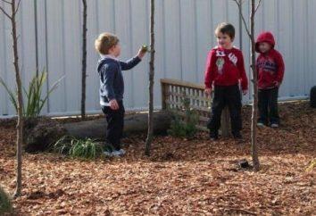 Dokonywanie obszary przedszkola w lecie