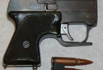 Pistola SME: la historia de la creación, aplicación, características técnicas