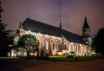 Nowy Rok w Kaliningradzie: Podróżni