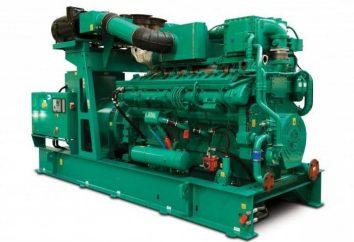 Gaskolbenkraft: das Funktionsprinzip. Betrieb und Instandhaltung von Kraftwerken Gaskolben