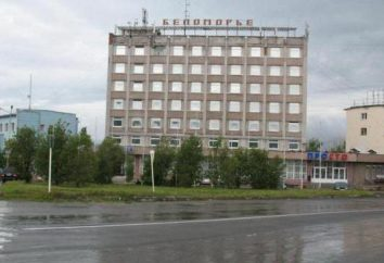 Ostelli e alberghi Kandalaksha: Resto al di sopra del Circolo Polare Artico