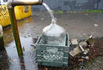 Was ist besser: ein Brunnen oder Bohrloch für ein Landhaus