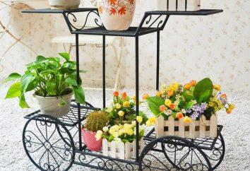 Sol pour les fleurs – décorer l'intérieur