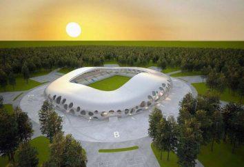 """Stadion """"Borysow Arena"""": budowa, pojemność, adres"""