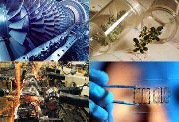 Avaliar a eficácia dos projectos de investimento – pontos importantes