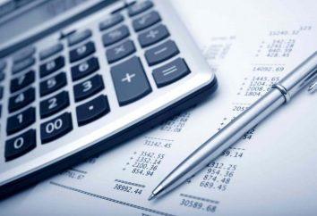 Die Steuerzahler der Einkommensteuer (Einkommensteuer in Russland)