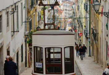Perché quest'anno è sicuramente bisogno di andare in Portogallo: 15 motivi