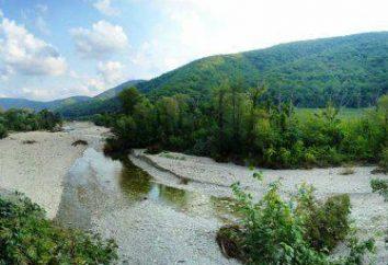Krasnodar region Ol'ginka: wakacje, sektor prywatny